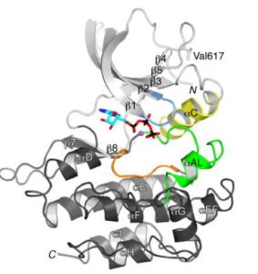 Nat Struct Mol Biol. 2012 Aug; 19(8): 754–759. Published online 2012 Jul 22. doi: 10.1038/nsmb.2348