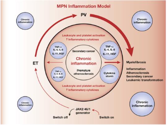 CRT Inflammation 1