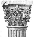 column-top
