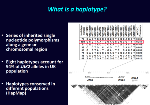 nick-cross-haplotype-46-1
